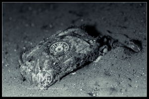 Kipling bag lost on the ocean floor