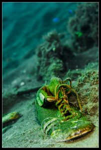 Shoe on the ocean floor