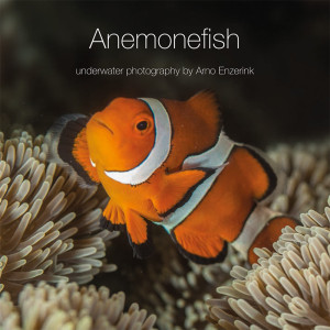 Anemonefish, 116 pages of beautiful anemonefish photographs